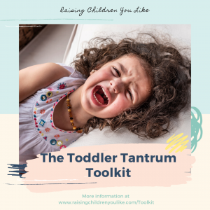 The Toddler Tantrum Toolkit